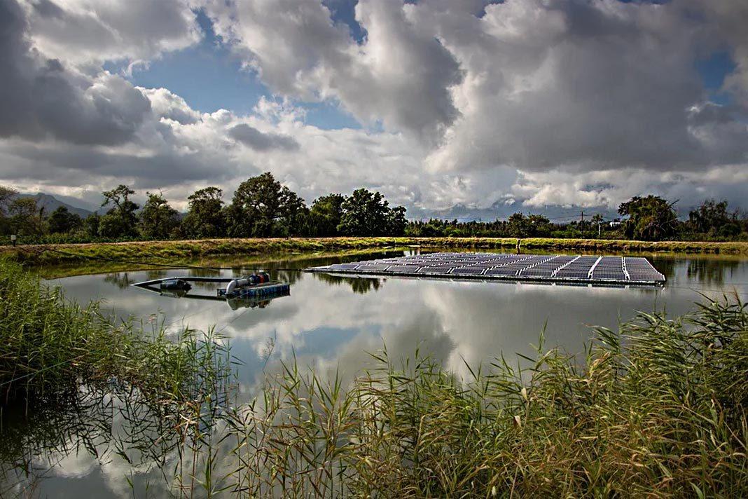 Marlenique Estate, floating solar park.