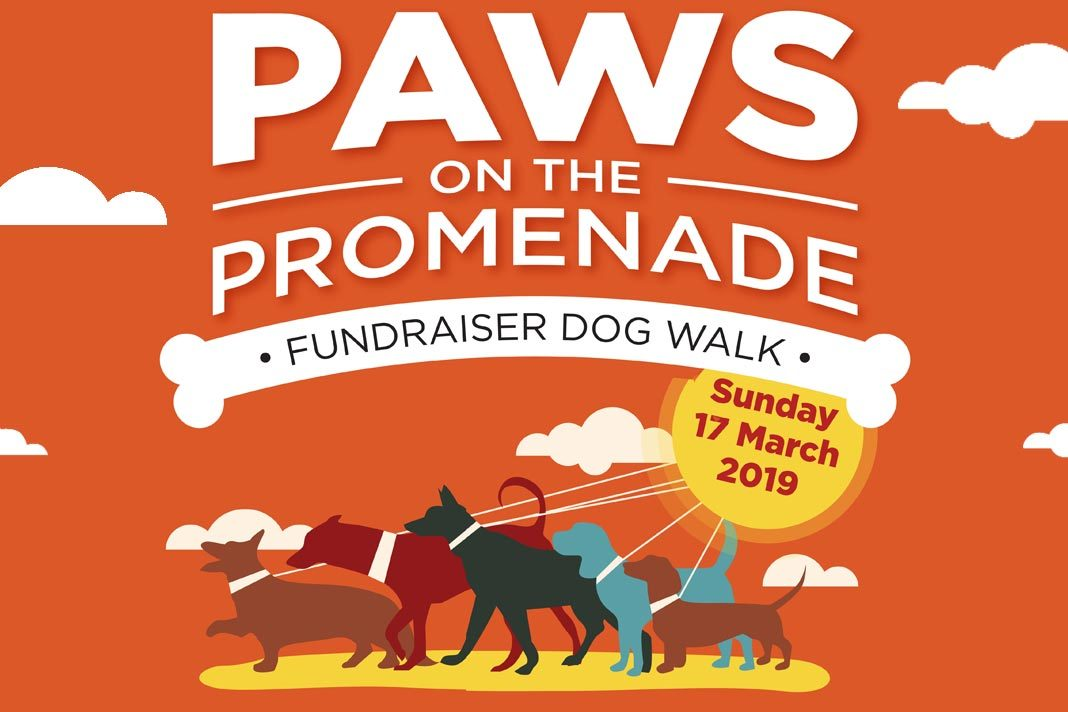 Paws on the Promenade