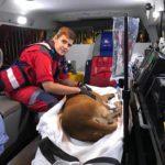 ER24 paramedics