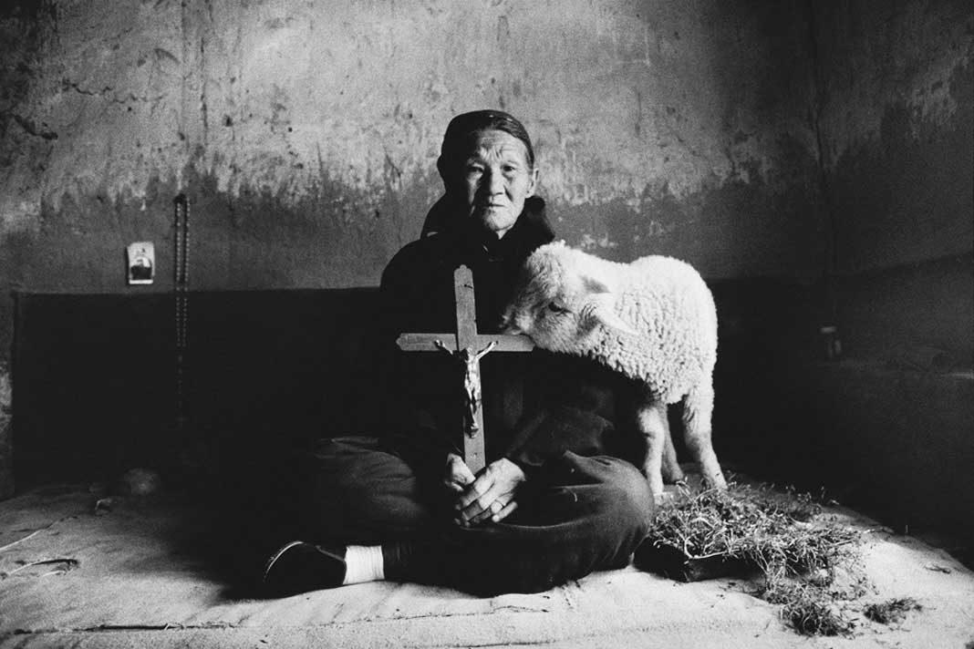 Catholics Chinese