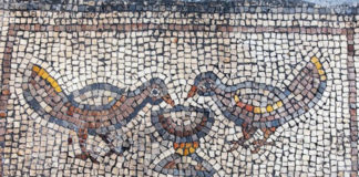 Hippos mosaic detail: birds drinking from a goblet of wine. Photo by Michael Eisenberg