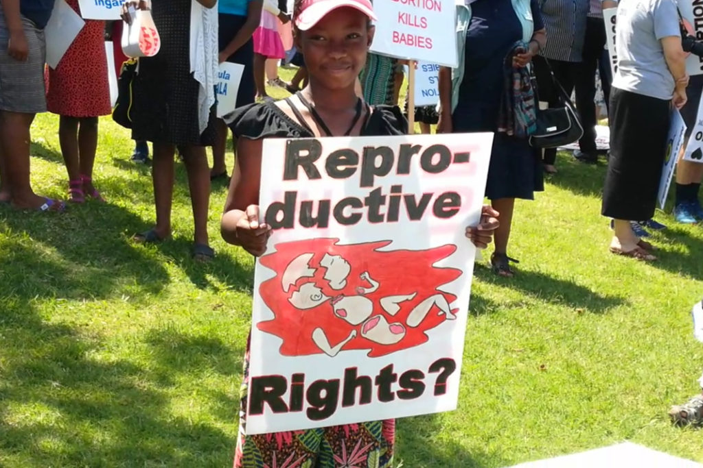 This image has an empty alt attribute; its file name is 600-march-in-south-africa-against-abortion2-1024x683.jpg
