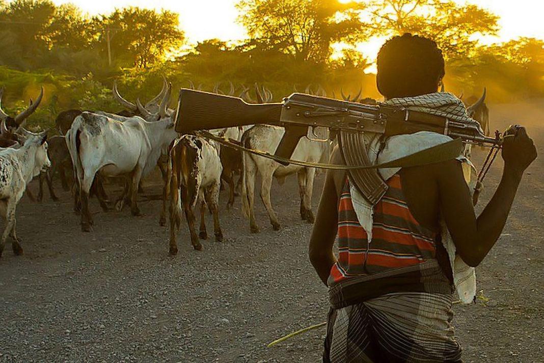 Fulani herdsmen with guns