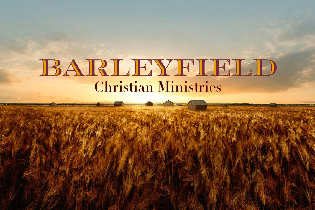 Barleyfield