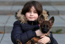 Child prodigy Laurent Simons with his dog Sammie at the University of Technology in Eindhoven ( REUTERS )