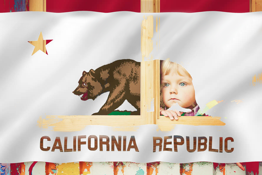 little Girl with California Flag